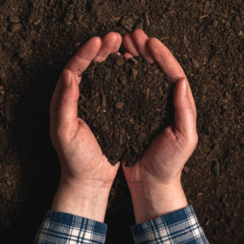 smaltimento-fanghi-agricoltura