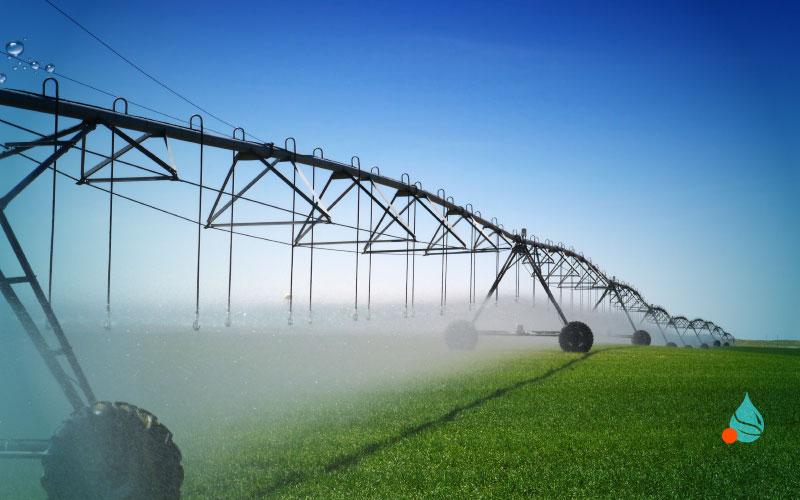 riutilizzo acque reflue in agricoltura allegri ecologia